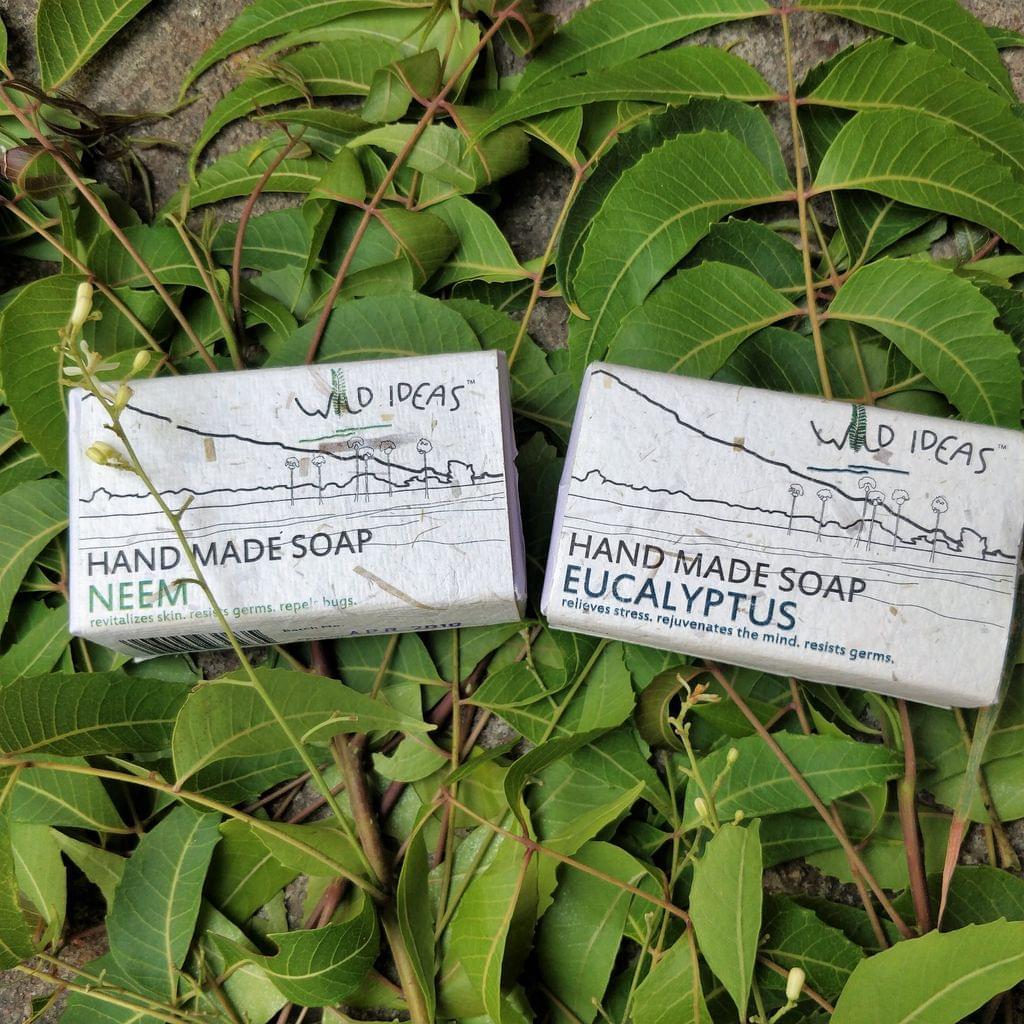 Wild Ideas Soaps Eucalyptus and Neem Combo