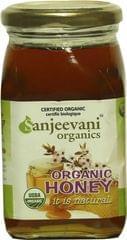 Organic Honey  250 Gms