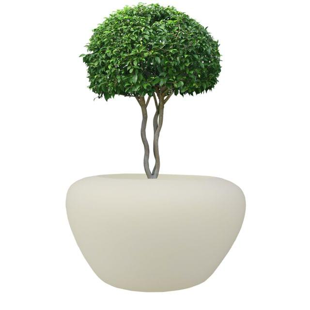Cream White Round 17 inches Apple Planter
