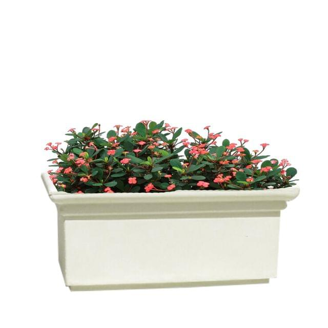 Yuccabe Italia FOX-B BT White Rectangular 26 Inches Planter
