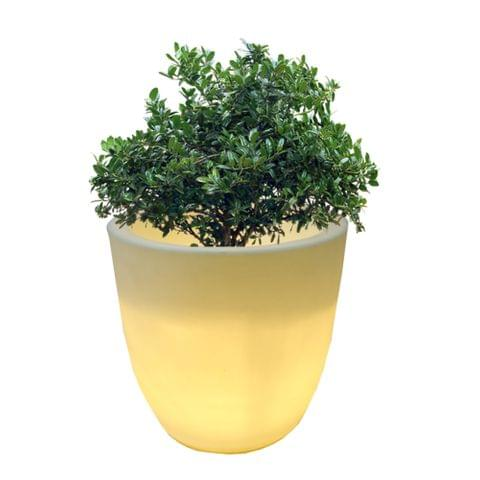 LED Pcup 24 Inches Planter