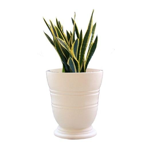 Cream White  Simpot 14 Inches Round Planter