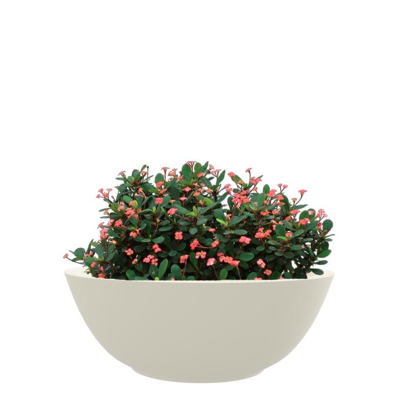 Creame White 18 Inches KTR Medium Planter