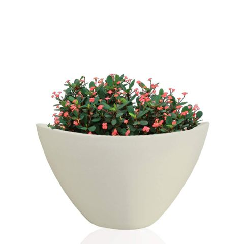 Yuccabe Italia Oval Shape 9 inches Planter