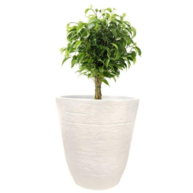 Yuccabe Italia 18 inches White TEX-Cup Round Planter
