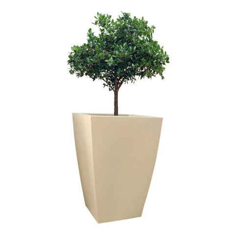 Yuccabe Italia Fox B Tk 30 Inches Beige Square Planter