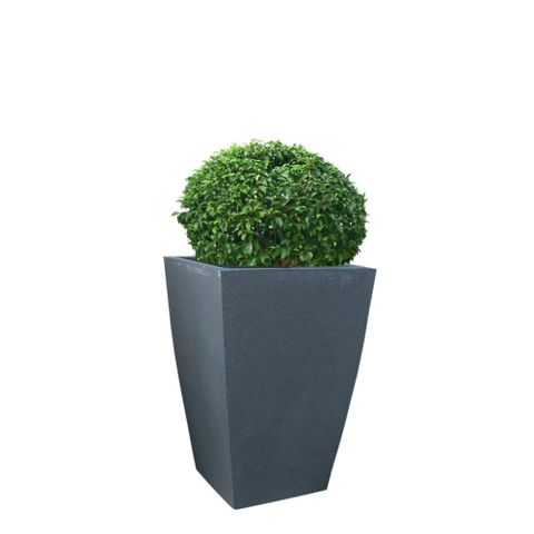Yuccabe Italia Fox B Tk 30 Inches Grey Square Planter