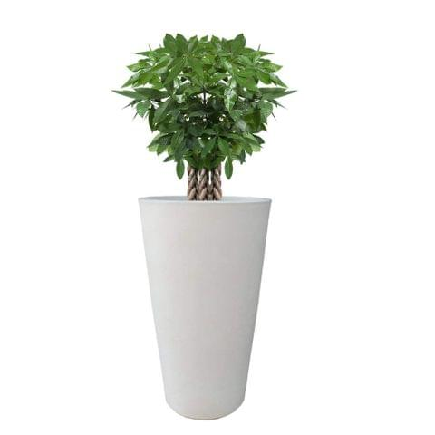 Yuccabe Fox B VNR 24 inches White Round Planter