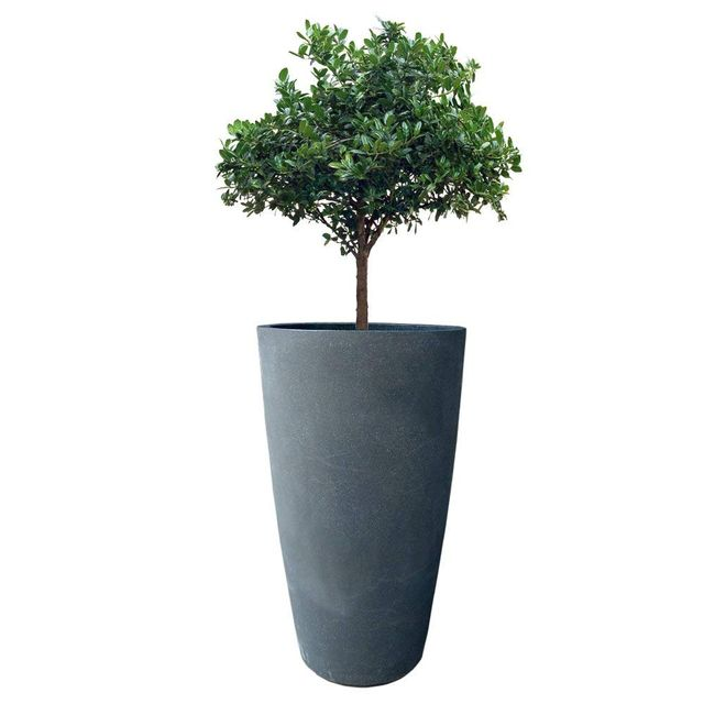 Yuccabe Fox B VNR 24 inches Grey Round Planter