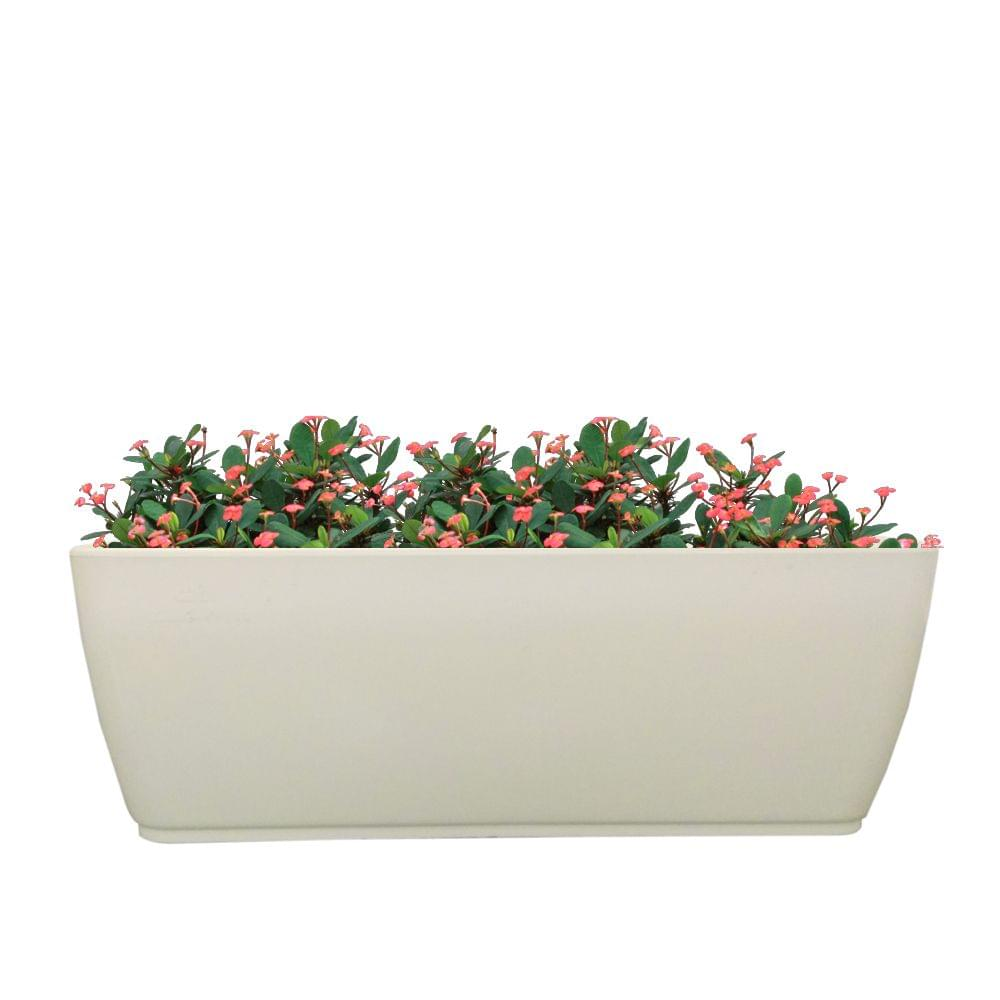 Cabi Tray 16 Inches Planter (Pack of 20 Pcs)