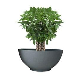 Yuccabe Fox B Ktr 18 Inches Grey Bowl Planter