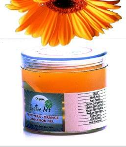 Organic Aloe Vera – Orange & Cinnamon Gel (100 gms)