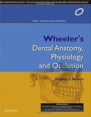 Nelson  Wheeler's Dental Anatomy, Physiology and Occlusion