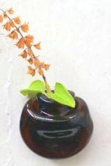 Mini Planter Fridge Magnet
