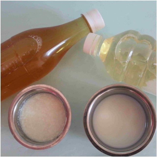 Traditional Nannari Sarbath (Syrup)