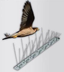 BIRD GUARD | PIN | 120G