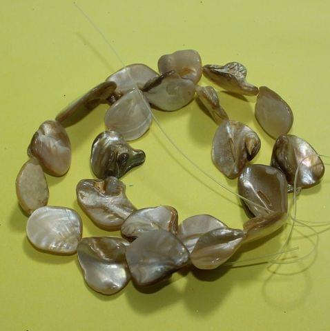 1 Strings Shell Beads 18-22 MM