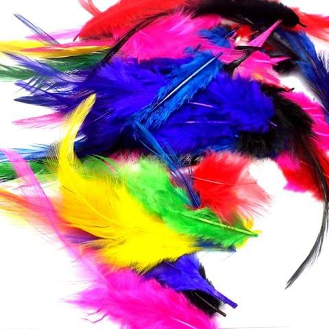 100 Jewellery Making Feather Assorted