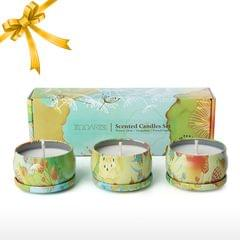 Tooarts| Scented Candle 100% Natural Soy Wax Long Last Clean