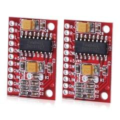 2 PCS LandaTianrui LDTR-WG0126 3W Audio Amplifier Board (Red)
