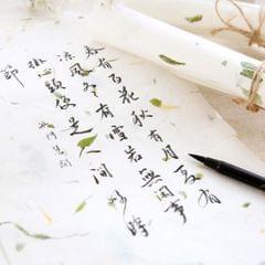 10Pcs Handmade Xuan Paper Washi Paper Stationery Paper Blue Tess Style