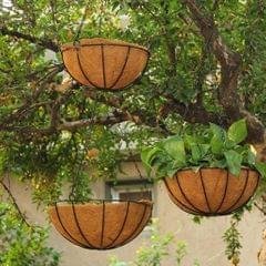 Hanging Coconut Basket Planter Flower Pot Back Black Metal Frame Hanger 14inch