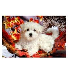 5D DIY Diamond Painting Animal Embroidery Art Craft For Home Decor Dog