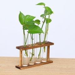 Wall Mounted Hanging Planter Test Tube Flower Vase Tabletop Glass Wood