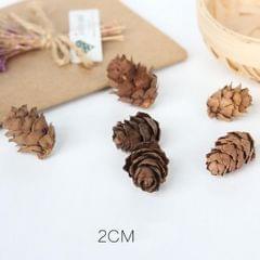 Natural Pinecones Pistachio Pine Cones Ornaments Gift Pine Cone - S