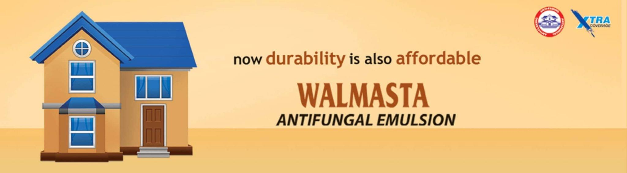Berger Paints Walmasta Exterior Emulsion